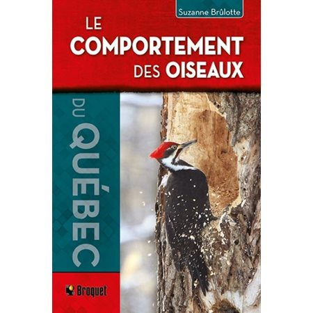 Le comportement des oiseaux du Québec