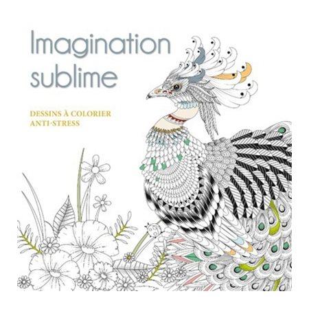 Imagination sublime
