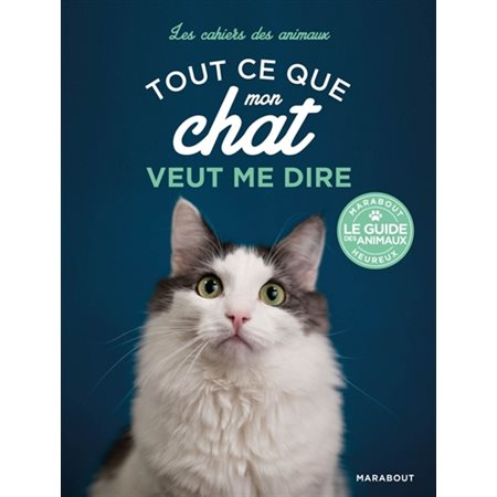 Tout ce que mon chat veut me dire